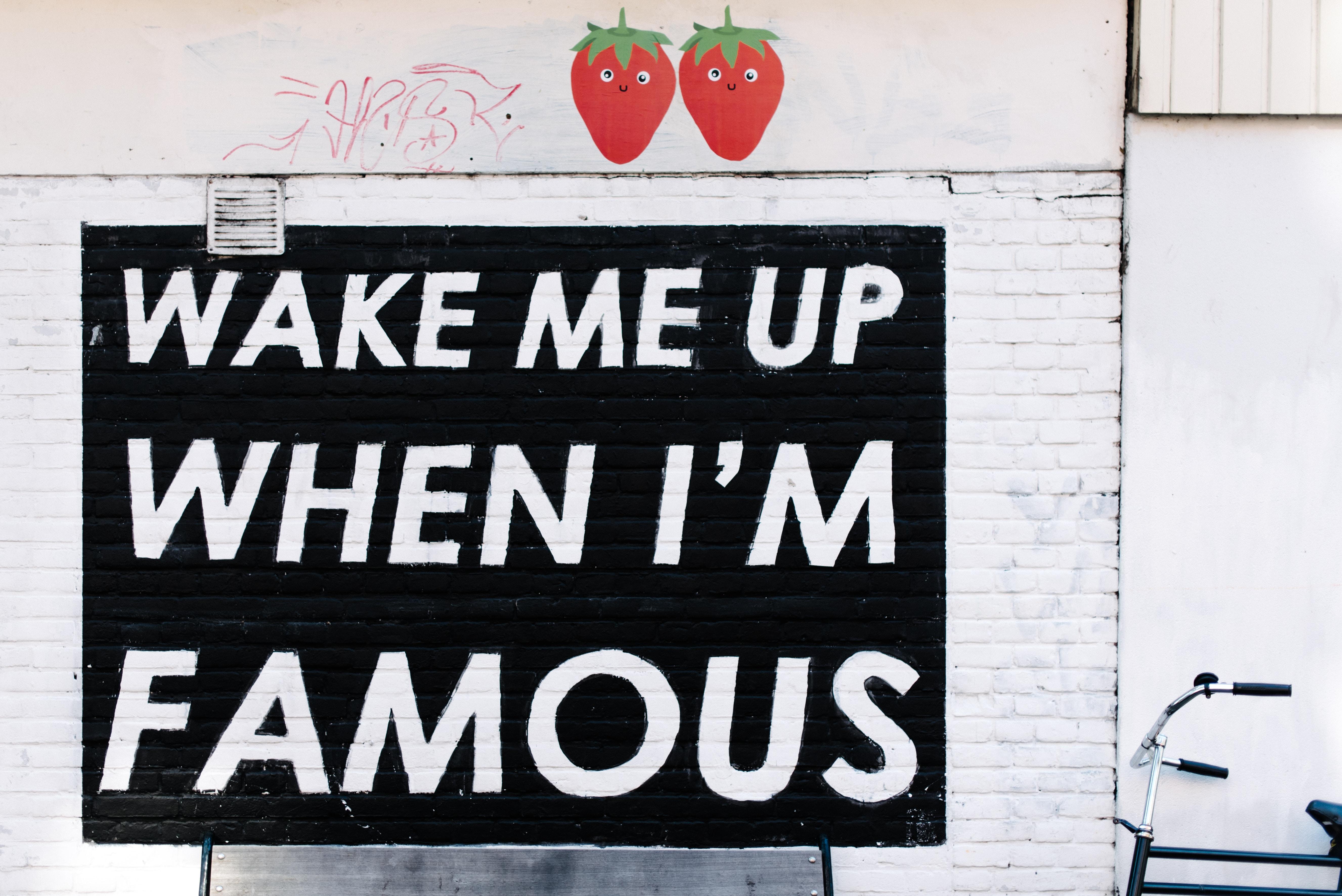 разбудите меня когда я стану знаменитым